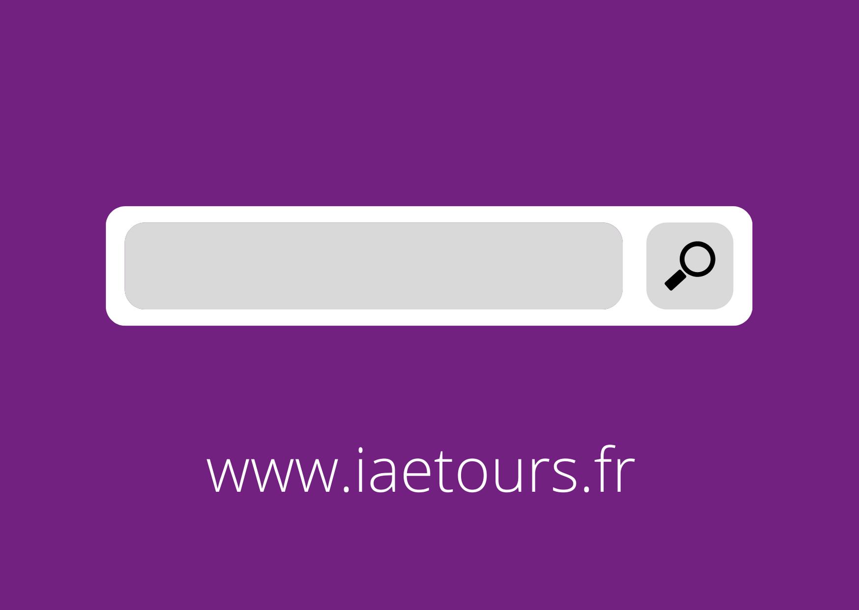 icone recherche web