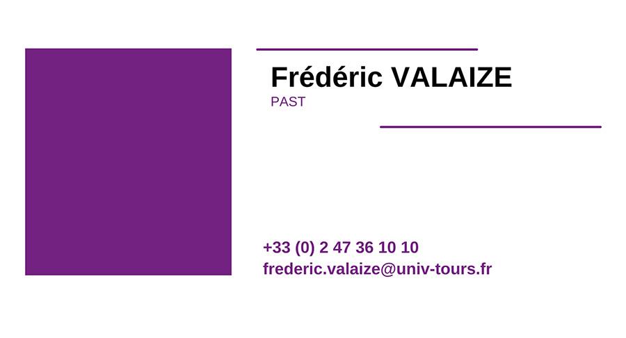 cv FREDERIC-VALAIZE