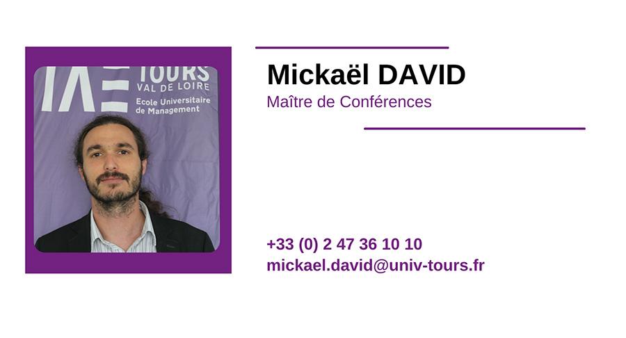 cv MICKAEL-DAVID