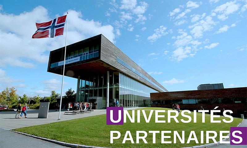 visuels universités partenaires